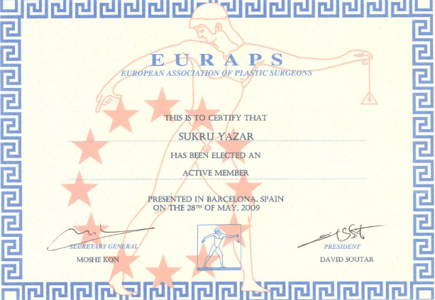 European Board of Plastic Reconstructive and Aesthetic Surgery