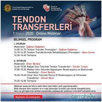 Tendon Transferleri
